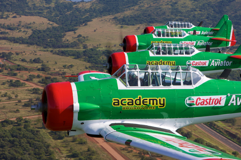 Flying Lions Castrol Aviator Academy Brushware 2nd colour scheme Steve Allison 1