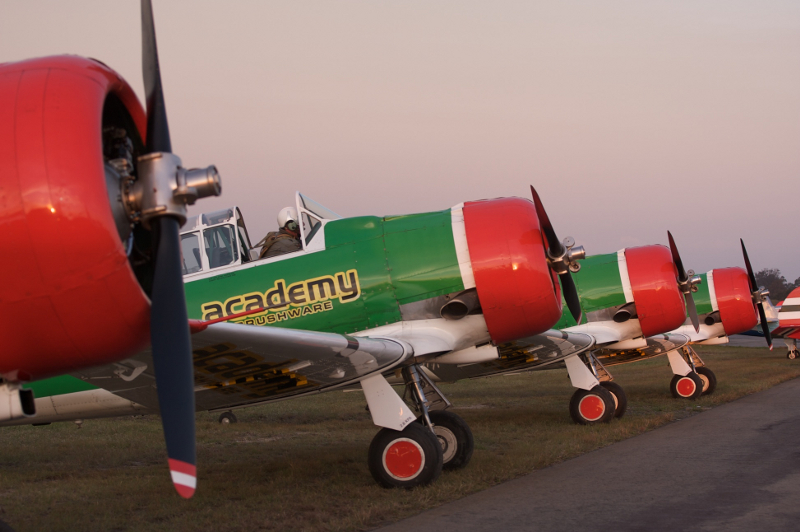 Flying Lions Castrol Aviator Academy Brushware 2nd colour scheme Steve Allison 13