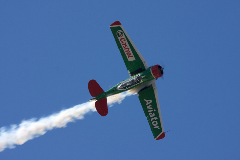 Flying Lions Castrol Aviator Academy Brushware 2nd colour scheme Steve Allison 6